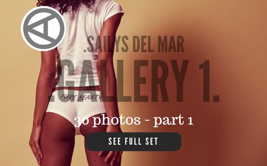 SAILYS-1-1