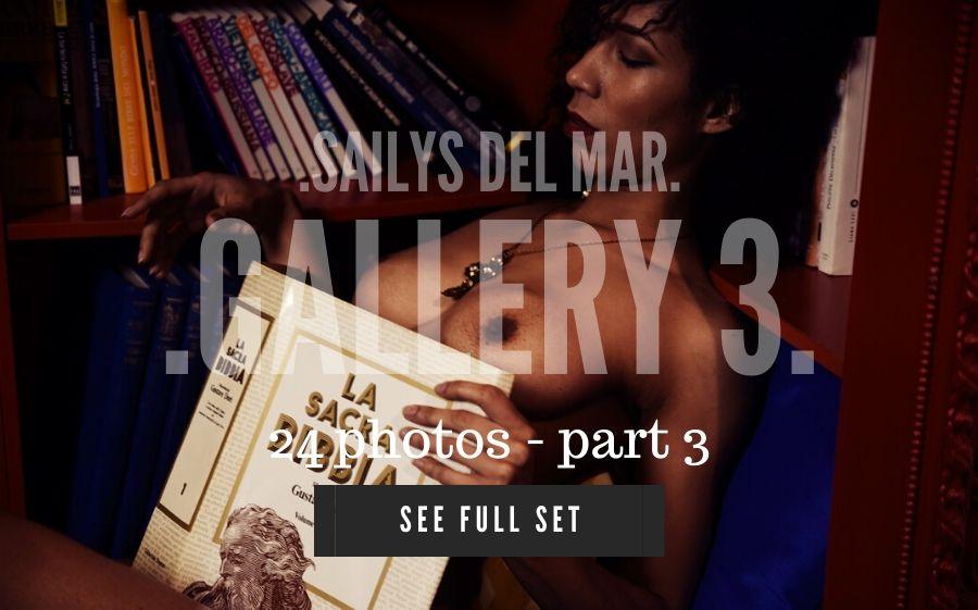 SAILYS33