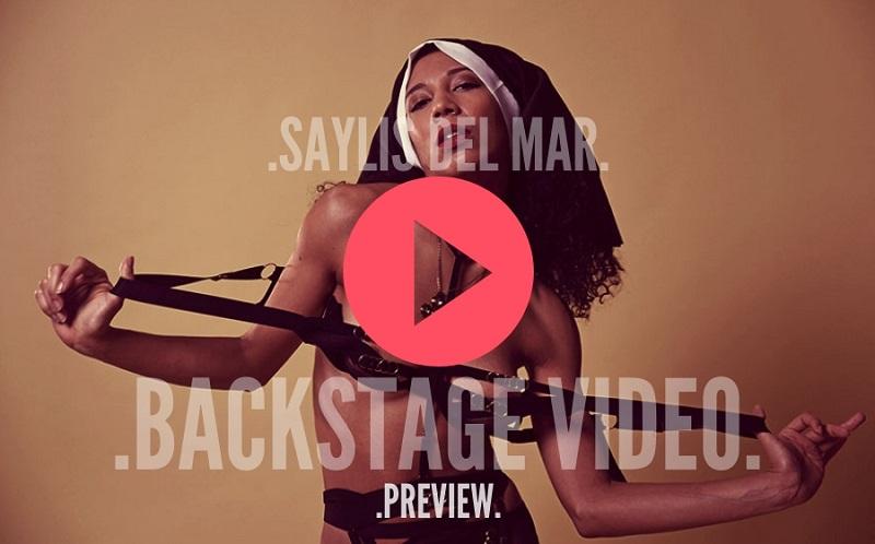 SAYLIS VIDEO PREVIEW